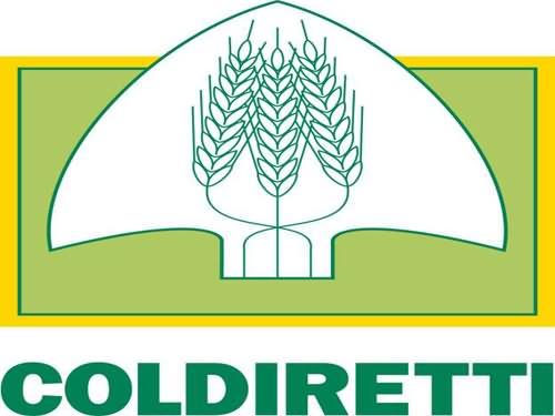 Coldiretti, s'aggrava siccità nei campi