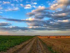 Agricoltura, PSR Campania 2018, target di spesa superati in largo anticipo